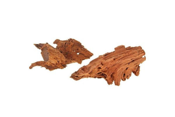 Корень мангрового  дерева (водная часть) 15-30 см
