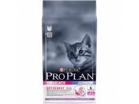 Pro Plan Junior Delicate Сухой корм для котят с чувствительной системой пищеварения с индейкой и рисом, 3 кг