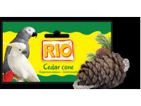 """Лакомство-игрушка """"Rio"""" кедровая шишка для крупных попугаев"""