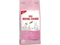 Сухой корм для котят в возрасте от 1 до 4 месяцев Royal Canin Mother&Babycat, 4 кг