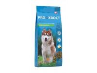 Прохвост для собак с чувствительным пищеварением и склонным к пищевой аллергии с лососем и рисом, 20 кг