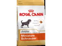 Корм для щенков породы Миниатюрный Шнауцер в возрасте до 10 месяцев Miniature Schnauzer Junior, 0,5 кг